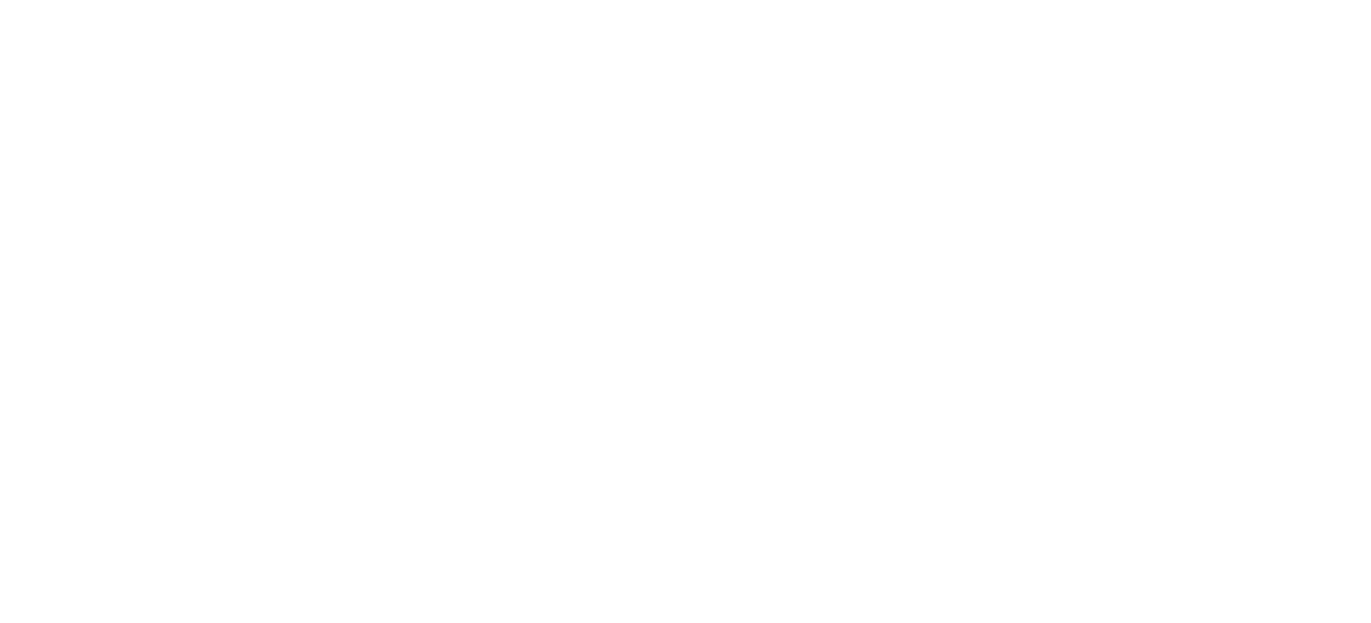 Curious Gecko Solutions
